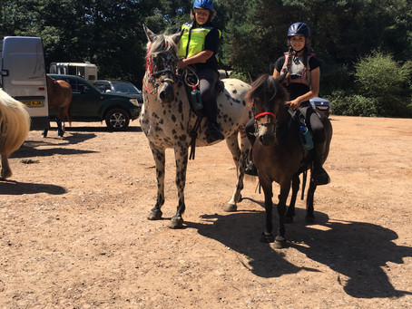 Photographs from the Summer Pleasure Ride on 05th August are now available on our website