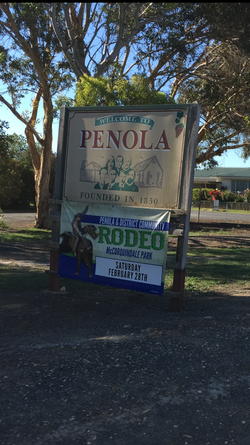 Penola Rodeo Advertising Banners