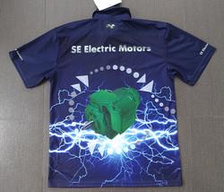 SE Electric Motor Rewinds Rear