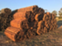 Lonza Wood Products.JPG