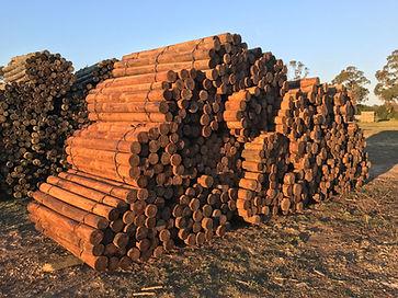 Lonza Wood Products.JPG