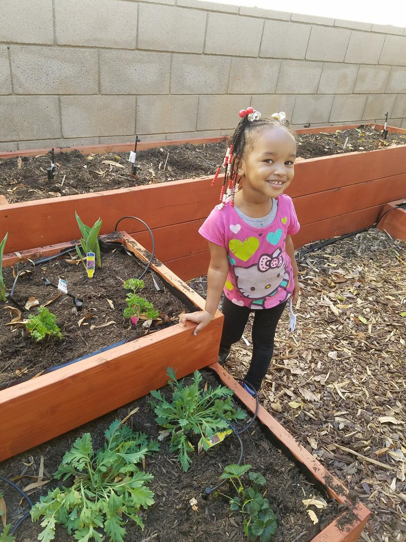 Growing in the Richard O. Jones Garden