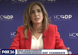 Sima Ladjevardian Democratic candidate for Congressional District 2
