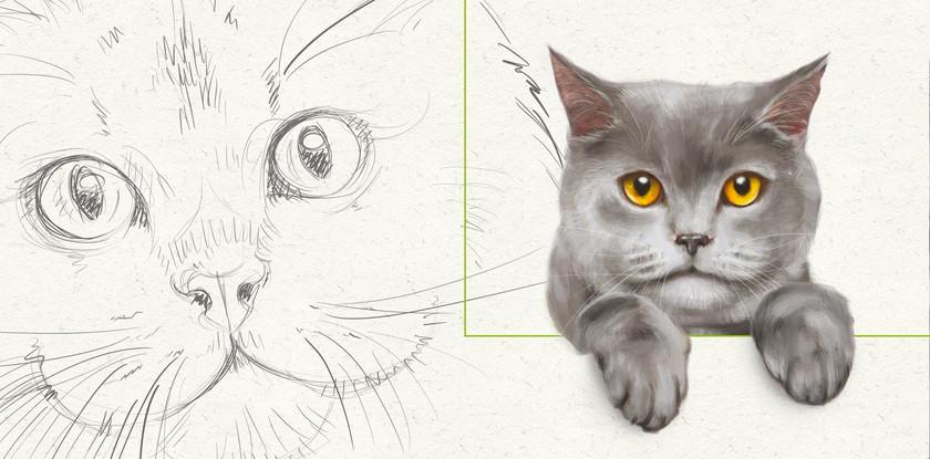 06_ch_bioc_disegni.jpg
