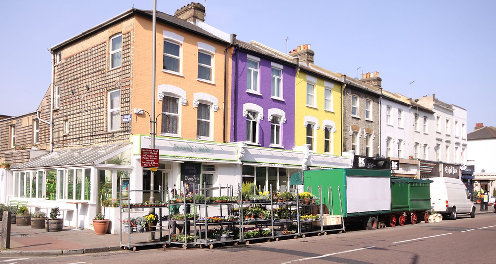 Market, Shopping, Northcote Road, Clapham Junction, London, Flowers