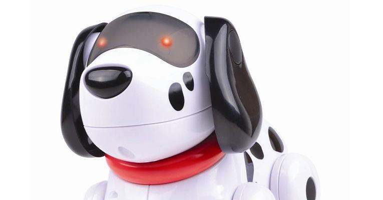 Dog - Header.jpg