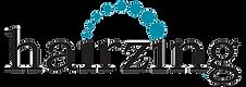 Hairzing logo.png