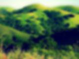 MtDiablo300.jpg