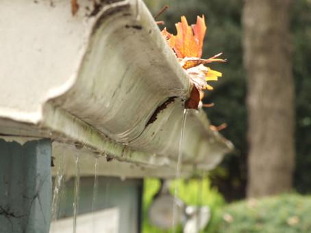 The necessity of gutter maintenance.