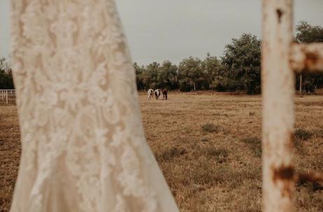 Dress and horses 2.jpg
