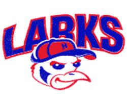 Hays Larks