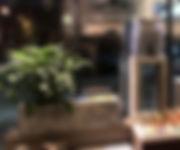 IMG_1135 3_edited.jpg