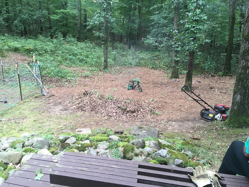 scrub, yard work, toddler bike, leaf piles, lawn mower