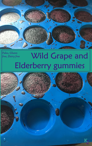wild grape and elderyberry syrup turned into immune boosting gummies gummy candy
