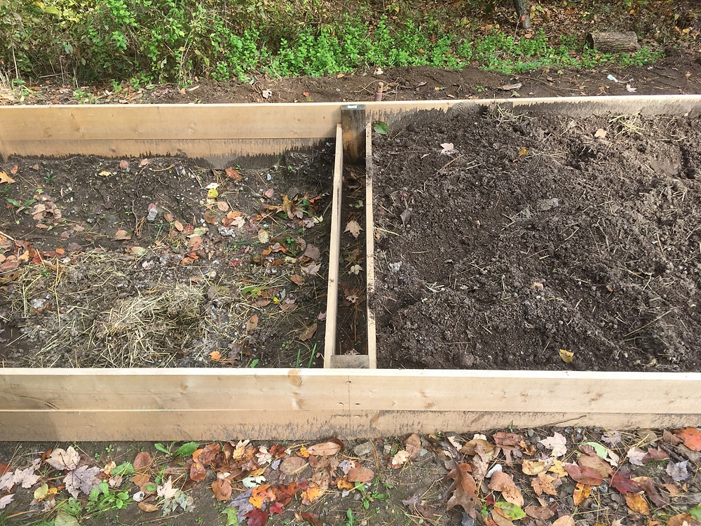 Raised garden bed with rabbit droppings