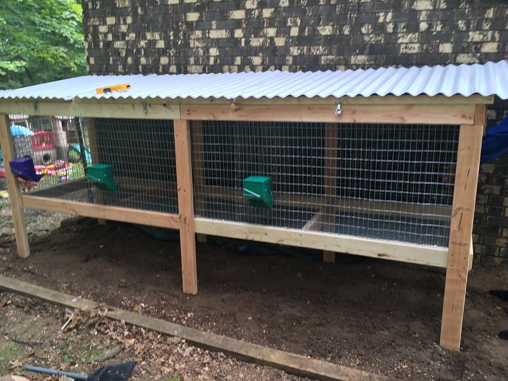 meat rabbit new zealand hutch design homestead bunny housing