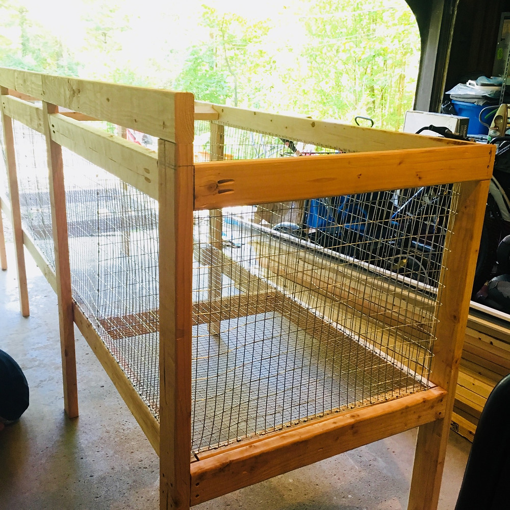 diy meat rabbit cage hutch homesteading