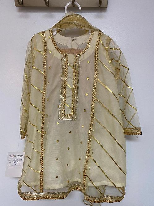 Beige & Gold Net