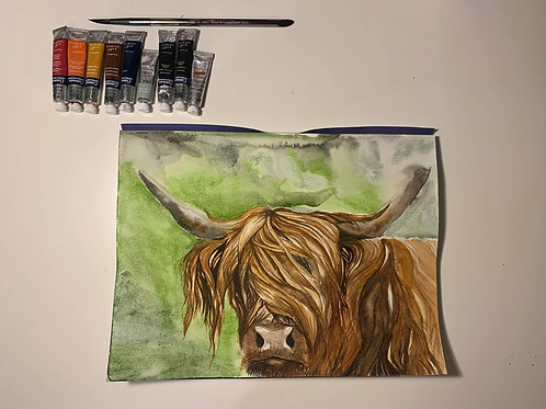 A4 'Highland Cow' Watercolor