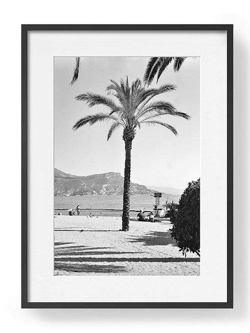 Framed  Jonah Frost-Dann Photograph
