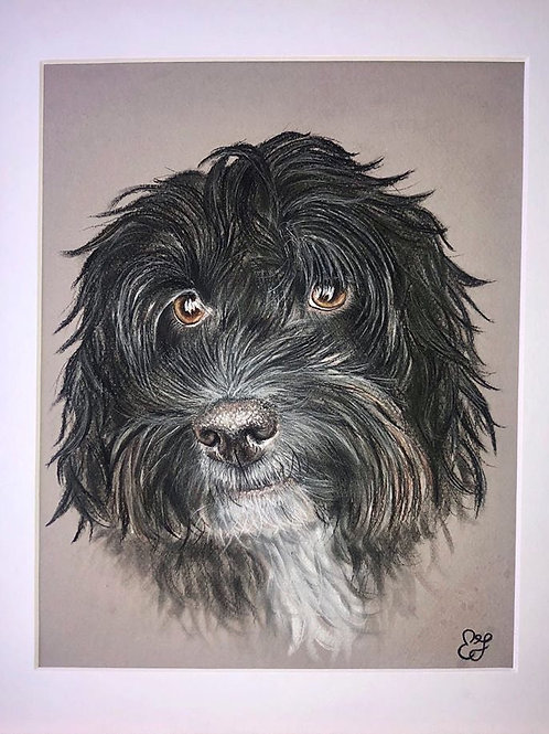 COMISSION A4 mounted pet portrait