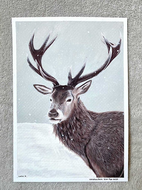 A5 Hand Painted Wollaton Hall Park Deer
