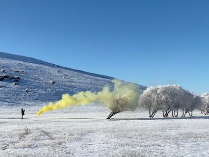 Hacer hablar a la imagen en el silencio y la soledad: Señales de humo de Patricia Viel