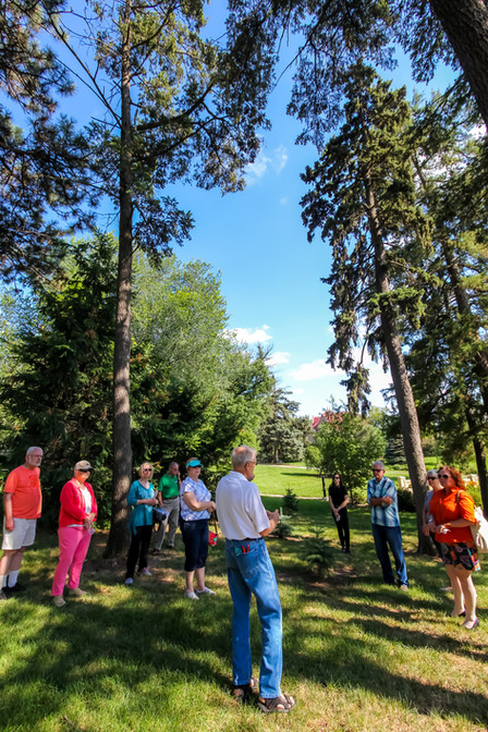 Arbor Tour