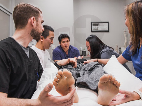 The Many Roads To Being A Great Physical Therapist