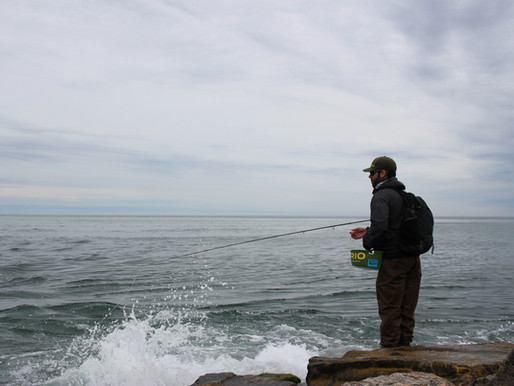 to find fish, find the birds… and make quality casts