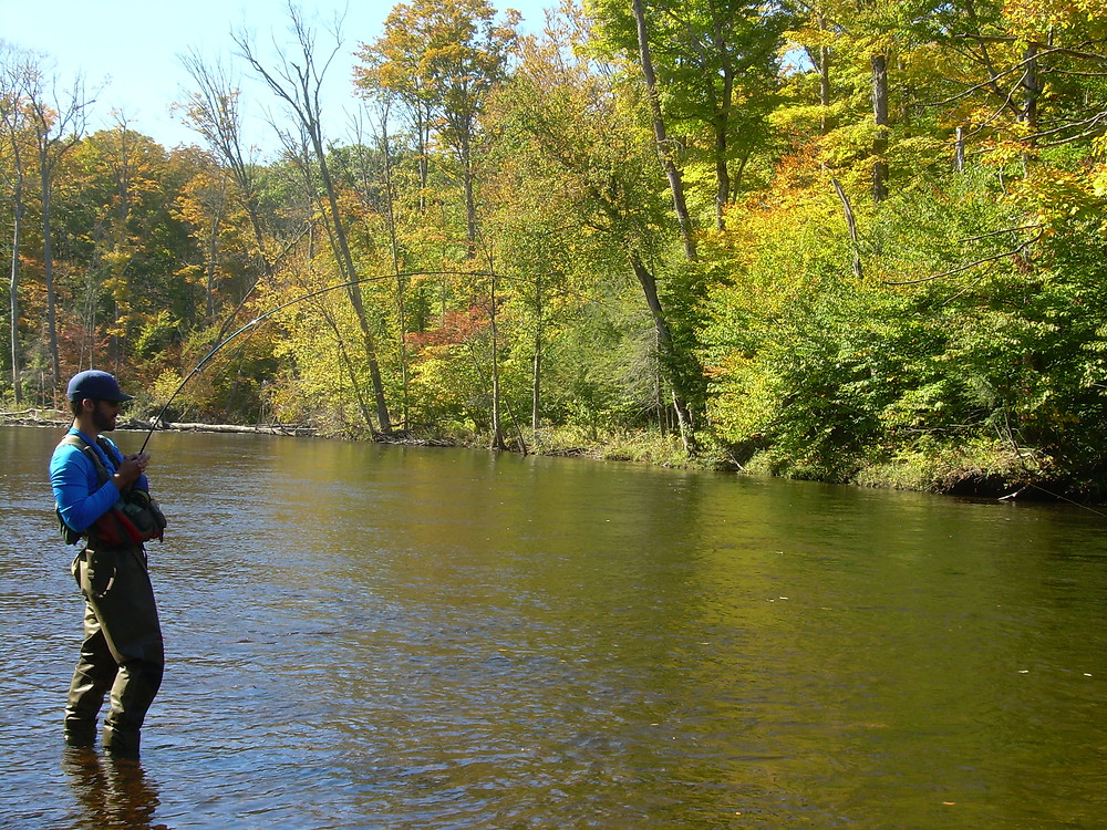 Fly Fishing for salmon in Upstate New York