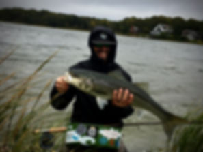 Brian Lansing is a fly fishing guide seen here with a big Cape Cod striped bass.