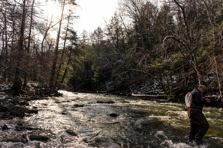 Late Fall Fly Fishing In Central New York
