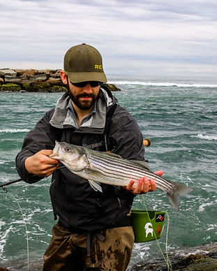 guided fly fishin in cap cod for striped bass