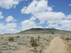 Volcanoes National Monument, Albuquerque