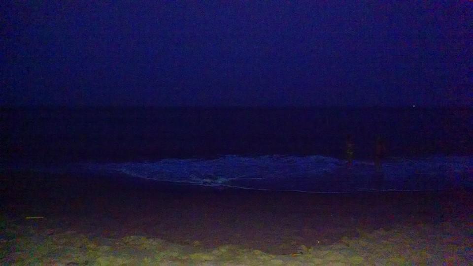 Beach Night on the Fly