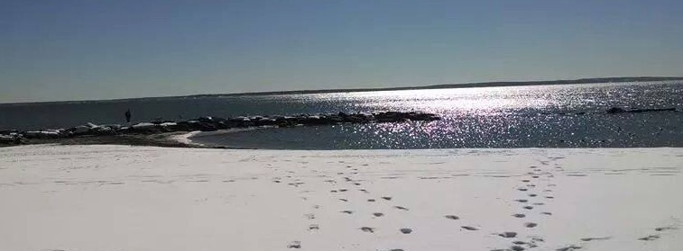 Cape Cod in deep winter 2014