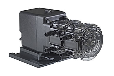 Double Head Fixed Chemical Injection Pump