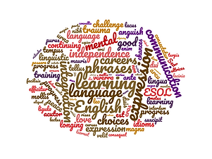 wordcloud_training-2.png