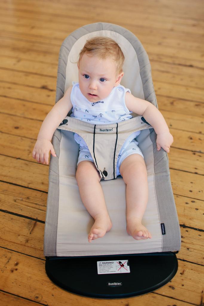 Baby Bjorn seat
