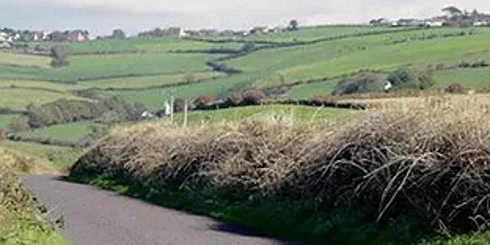 Irsk Aften - Utsolgt