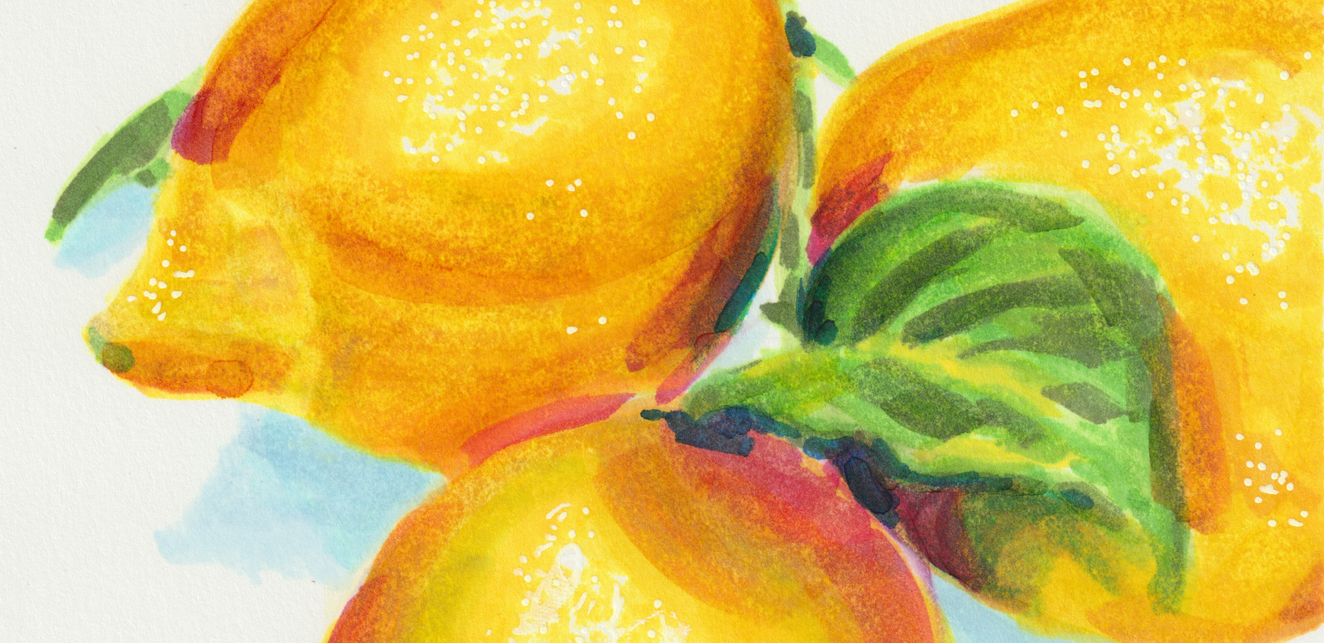 Lemon Marker Drawing.jpeg
