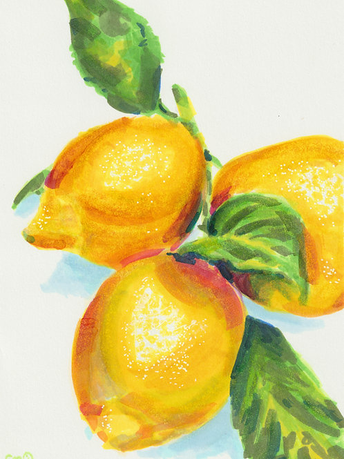 Lemon Marker Drawing