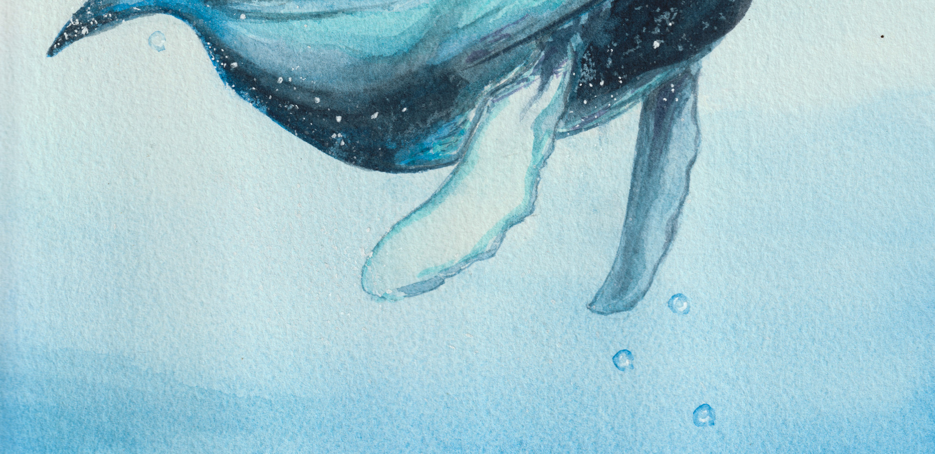 Lone Whale Watercolor Painting (1 of 1).