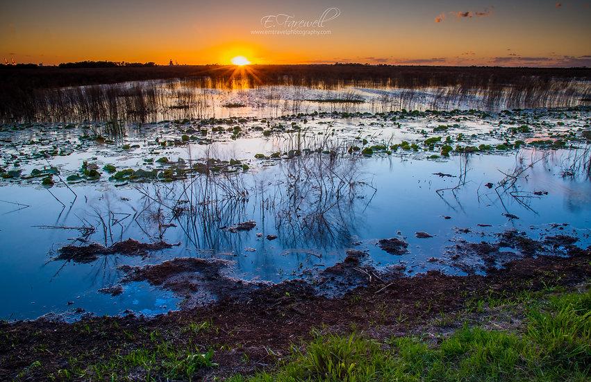 Everglades at Dusk