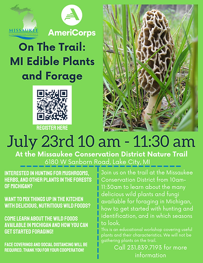 On The Trail MI Edible Plants and Forage