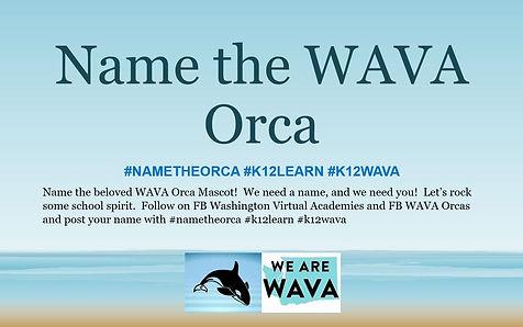 Name the orca pic.JPG