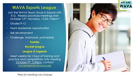 esport info.PNG