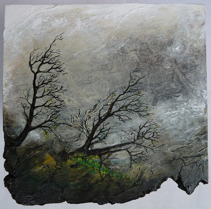 Vientos invernales I. 2011