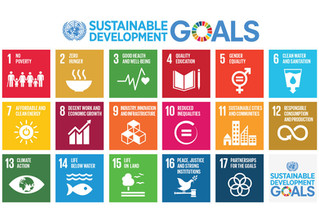 Investment Insights for the Jewish Community to Further the UN Sustainable Development Goals